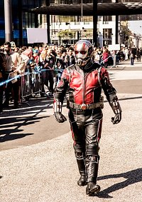 Cosplay-Cover: Ant-Man (Film 2015)