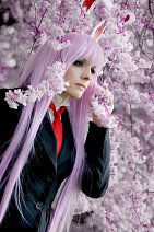 Cosplay-Cover: Reisen Udongein Inaba