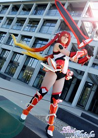 Cosplay-Cover: Tail Red (Soji Mitsuka)