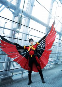 Cosplay-Cover: Red Robin (Tim Drake)
