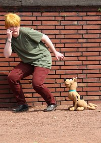 Cosplay-Cover: Shaggy (Norville Rogers)