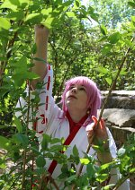 Cosplay-Cover: Neko [Traditionell Version]