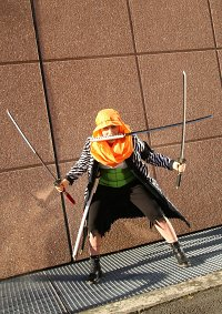 Cosplay-Cover: Roronoa Zoro - Alabasta