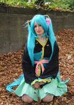Cosplay-Cover: Miku Hatsune Butterfly Ver.