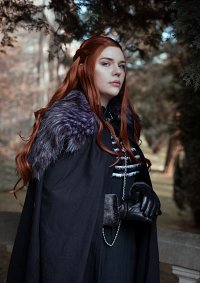 Cosplay-Cover: Sansa Stark [Season 7]