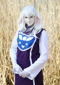 Cosplay-Cover: Toriel