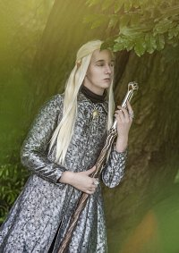 Cosplay-Cover: Thranduil - King of the Woodland