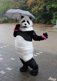 Cosplay-Cover: Panda