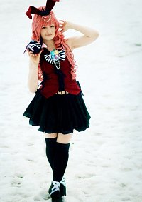 Cosplay-Cover: Nekota Anzu [Clamp Fes 2012]