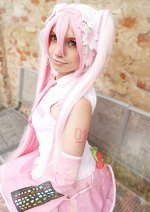 Cosplay-Cover: Hatsune Miku - Sakura Version