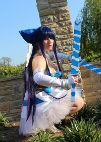 Cosplay-Cover: Anarchy Stocking (Angel)