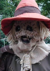 Cosplay-Cover: Scarecrow