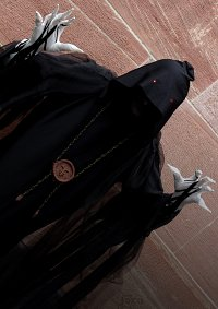Cosplay-Cover: Qui Shen / Wraith