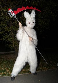 Cosplay-Cover: Hase