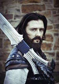 Cosplay-Cover: Anduin Lothar