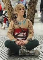 Cosplay-Cover: Link [Skyloft]
