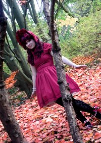 Cosplay-Cover: Alice and the Pirates ~AnnSea
