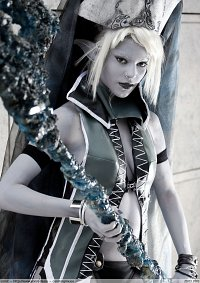 Cosplay-Cover: Dark Elf Gatekeeper