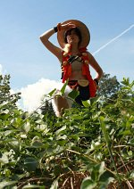 Cosplay-Cover: Monkey D Luffy [Unlimited Cruise]