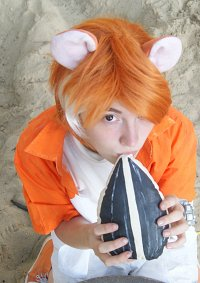 Cosplay-Cover: Hamtaro