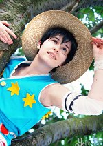 Cosplay-Cover: Monkey D Luffy [Amazon Lily]