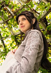 Cosplay-Cover: Arwen Undómiel (Chase Dress)