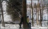 Top-3-Foto - von YumeNamid