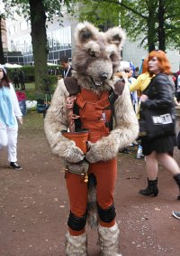 Cosplay-Cover: Rocket Racoon