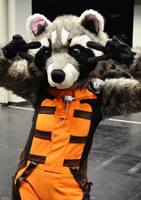 Cosplay-Cover: Rocket Raccoon