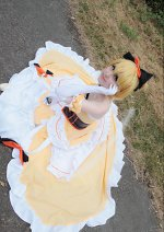 Cosplay-Cover: Felt [Ball Gown]