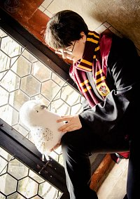 Cosplay-Cover: Harry Potter *Winteruniform*