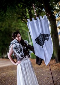 Cosplay-Cover: House Stark