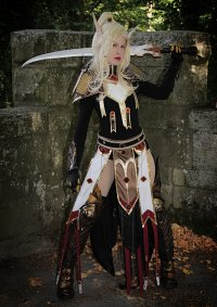 Cosplay-Cover: Bloodelf Paladin