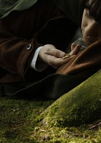 Cosplay-Cover: Frodo Baggins