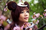 Top-3-Foto - von fuwishi