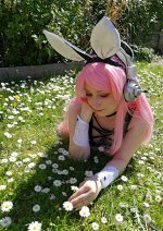 Cosplay-Cover: Bunny Sonico