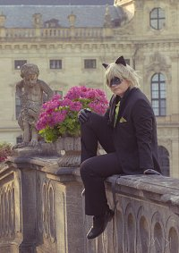 Cosplay-Cover: Chat Noir Ball Outfit