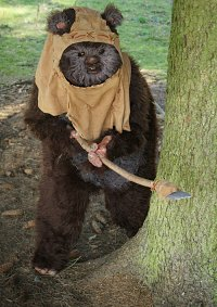 Cosplay-Cover: Wicket (Ewok)
