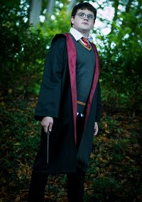 Cosplay-Cover: Harry Potter {Movie Version}