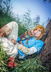 Cosplay-Cover: Link [Breath of the Wild]