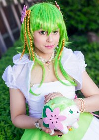 Cosplay-Cover: Shaymin