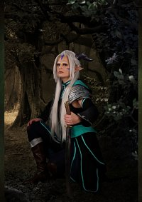 Cosplay-Cover: Elf Lord