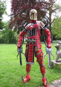 Cosplay-Cover: Voldo