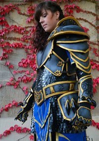 Cosplay-Cover: Anduin Lothar (female)