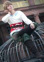 Cosplay-Cover: Link [Skyward Sword]