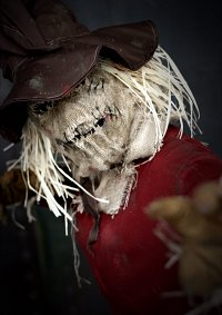Cosplay-Cover: Scarecrow [animated series]