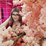 Top-3-Foto - von ScarletYasutsuna