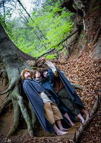 Cosplay-Cover: Peregrin Tuk [Pippin]