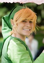 Cosplay-Cover: Link [Minish Cap]