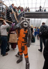 Cosplay-Cover: Rocket  (Guardians of the Galaxy )